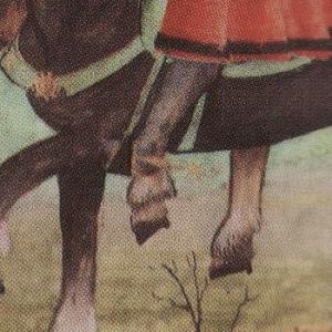 De paardenpoot van Karel V